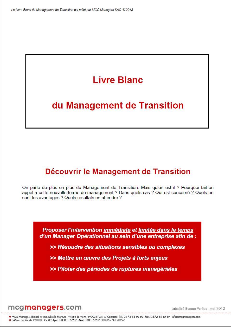 Vignette_lb-management-de-transition-2013