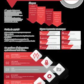 Infographie-DSI