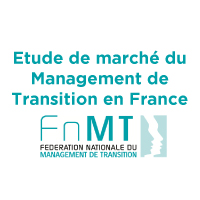 cabinet management de transition lyon et mcg managers leader en