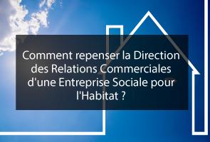 Innover la Direction des Relations Commerciales d'une ESH
